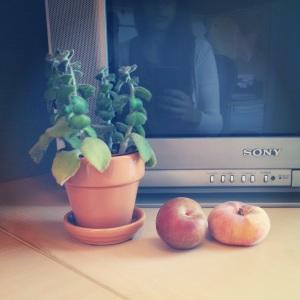 61614 fruit