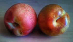 70814 fruit