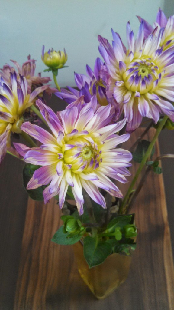 71014 flowers