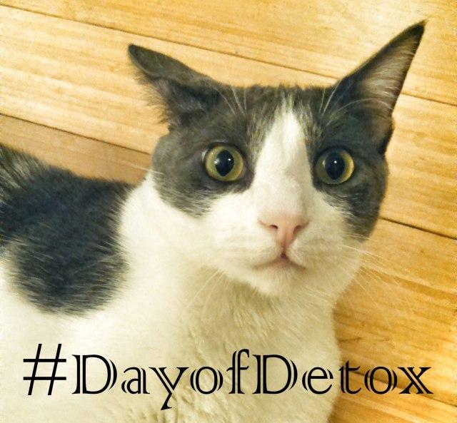 DayofDetox