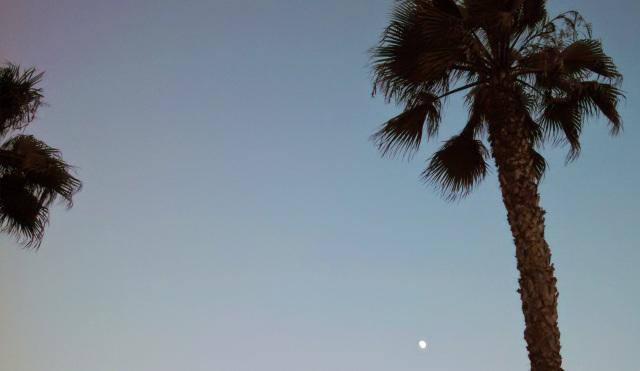 tiny moon
